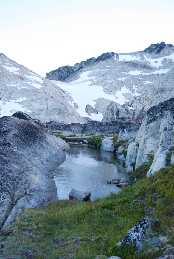 Along the Enchanted Lakes Trail at 7800'; July 2014