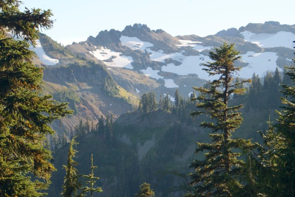 On the PCT in the Goat Rocks Wilderness in the southern Cascades. My first solo backpacking trip.